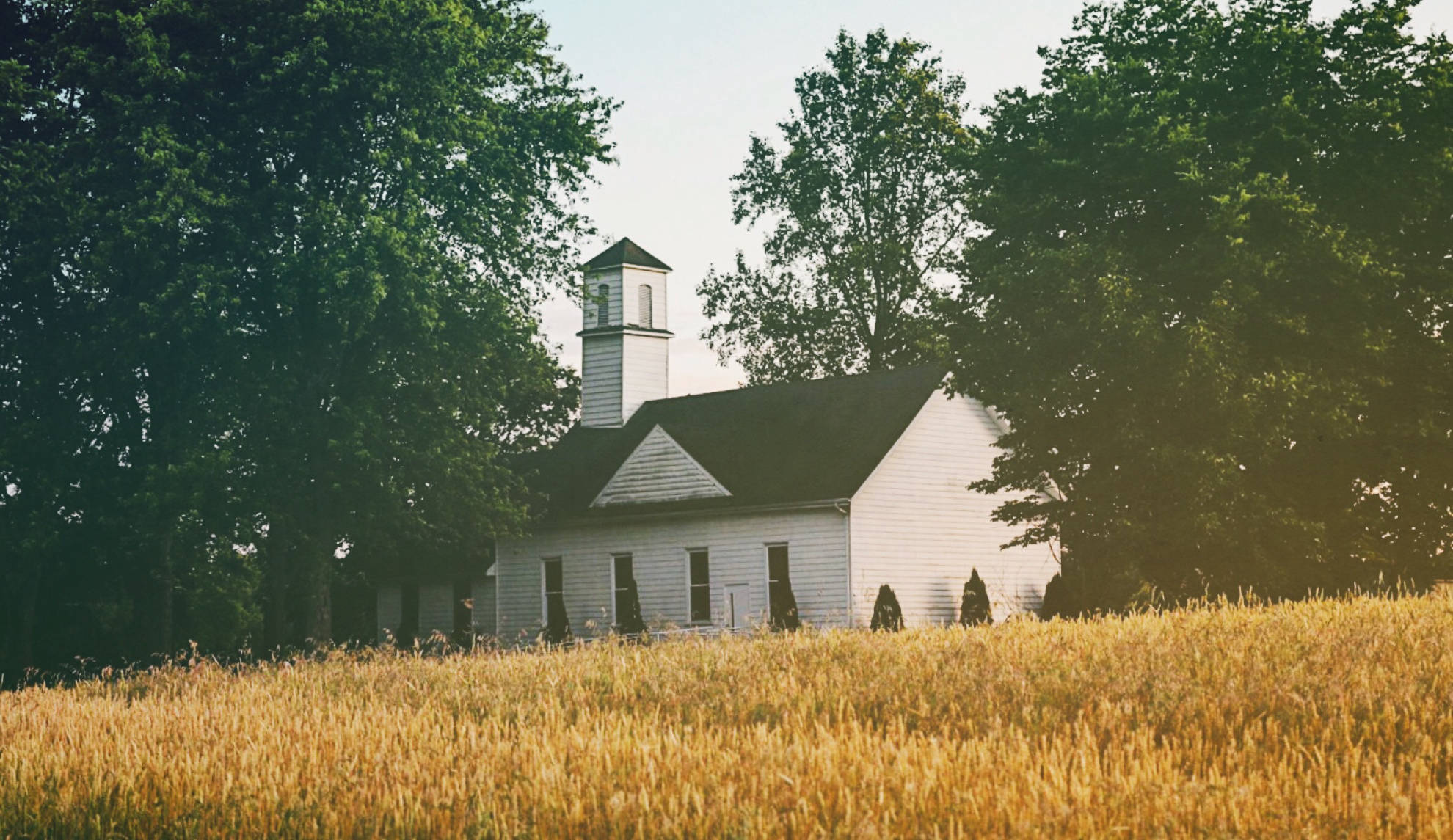 The Governance of the Church